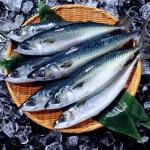 イコサペンタエン酸(EPA)含有精製魚油食品