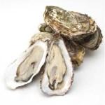 牡蠣抽出物食品