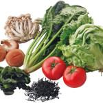 規格基準型特定保健用食品